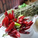 「イタリア好き委員会」でカラブリア州のお料理を紹介&コラムを担当します♪