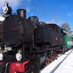 山間部を行く蒸気機関車。カラブリア州シラ国立公園内で期間限定運行中